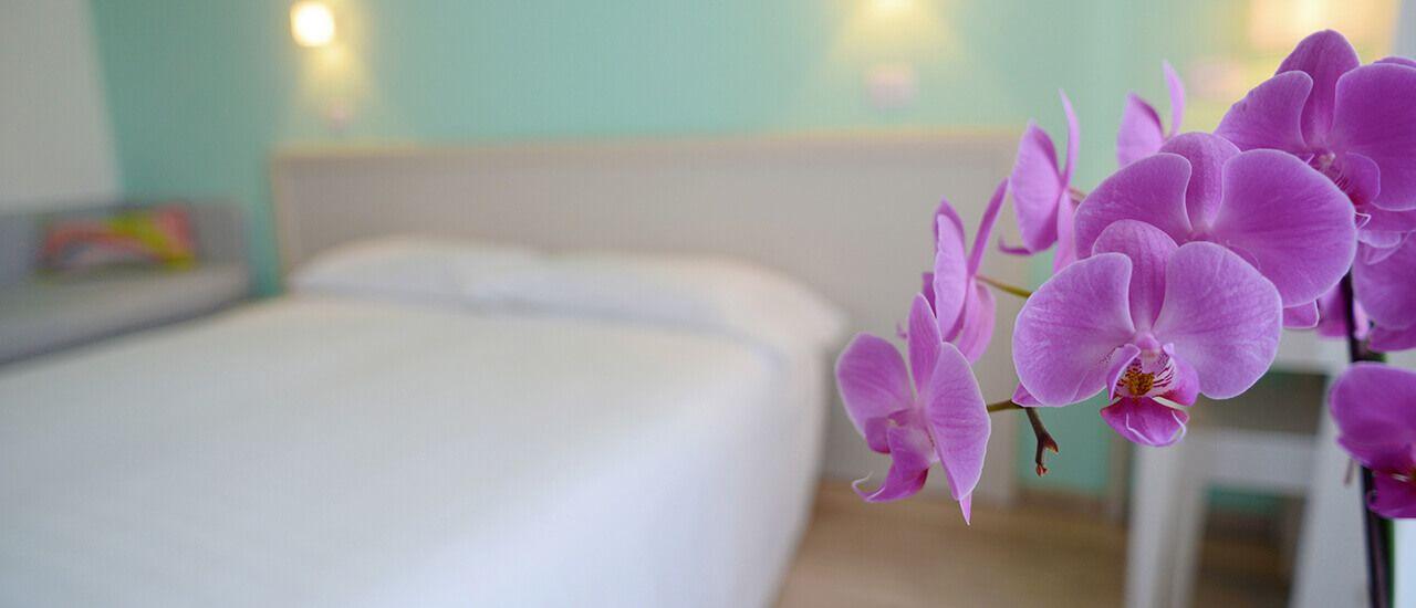 orchidea-1280x550flip
